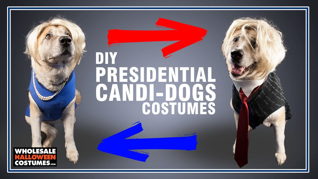 Presidential Dog Costumes