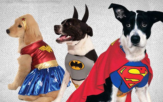 Licensed Dog Costumes