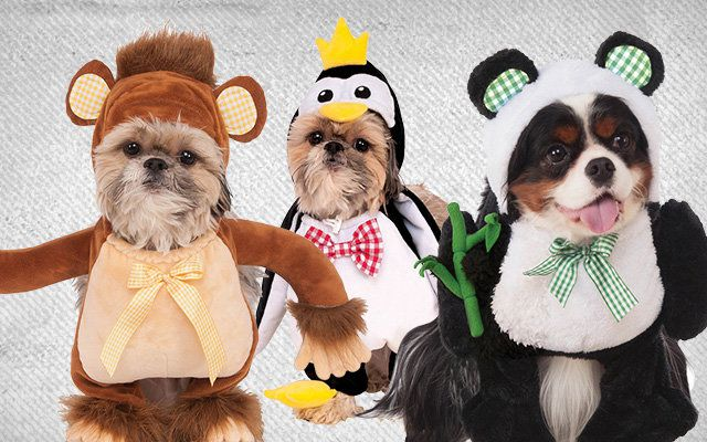 Dog Animal Costumes