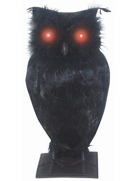 "10"" Light Up Possessed Owl"