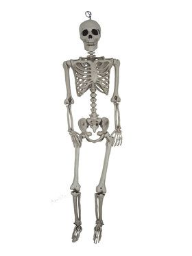 5Ft Hanging Skeleton Decoration