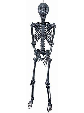 "60"" Posable Silver Skeleton Prop"