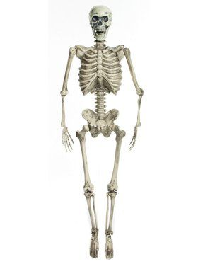"60"" Posable Skeleton Prop with Lights"
