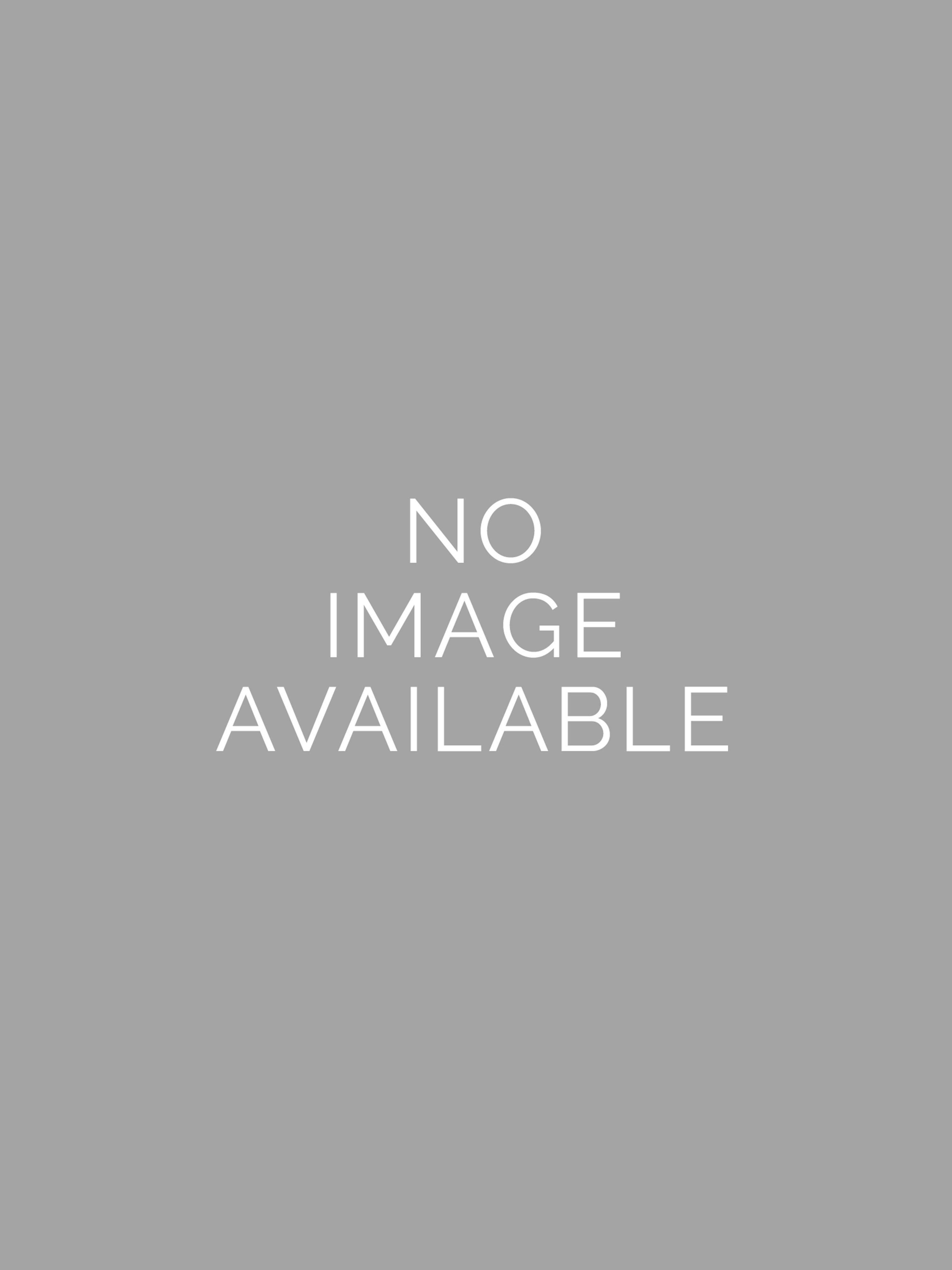 Adult Inflatable T-Rex Costume With Sound R820679-STD