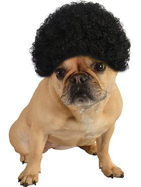 Afro Doggie Wig