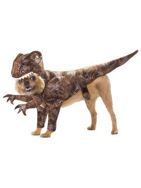 Animal Planet Raptor Costume For Pets