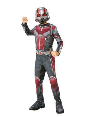 Avengers: Endgame Ant Man Child Costume