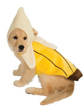 Banana Costume for Pet