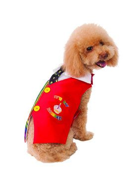 Barkday Vest Costume for Pet