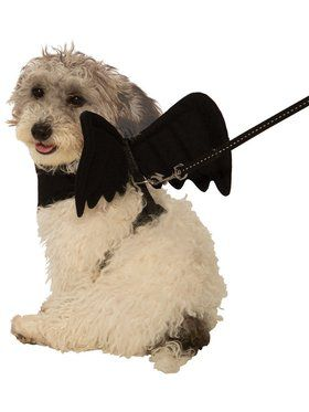 Bat Harness Costume for Pet