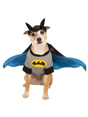 Batman Dog's Costume