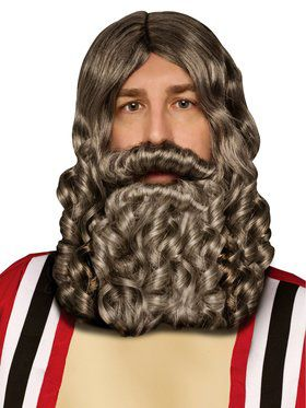 Biblical Beard and Wig Grey