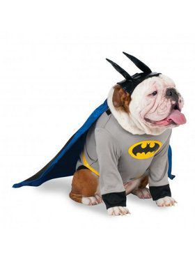 Big Dogs Batman Costume
