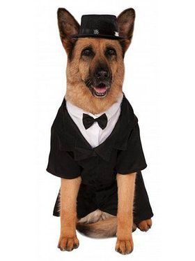 Big Dog's Dapper Tuxedo Pet Costume