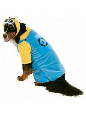 Big Dogs Minion Costume
