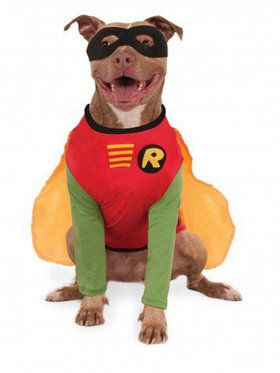 Super Pet Collection: Robin Pet Costume