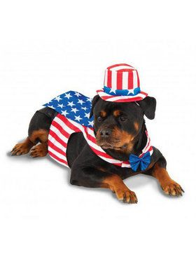 Patriotic Pet Collection: Uncle Sam Pet Costume