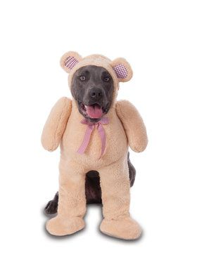Walking Teddy Bear Big Dog's Costume for Pet