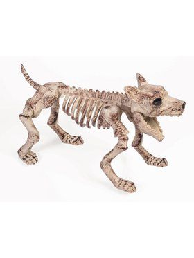 Skeleton Bone Dog Prop Decoration