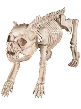 Bones the Skeleton Dog Prop