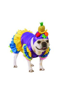 Brazilian Bombshell Costume for Pet