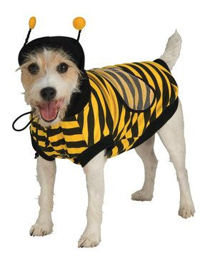 Bumble Bee Costume for Pet