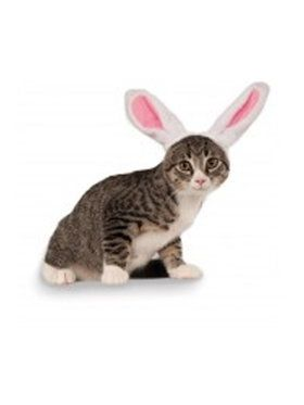 Bunny Ears For Your Pet