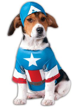 Captain America Avenger Pet Costume