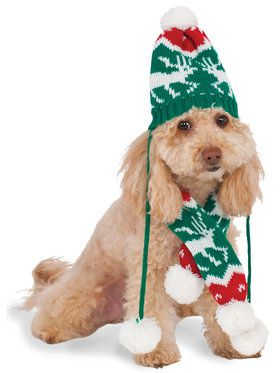 Christmas Hat and Scarf Pet Costume