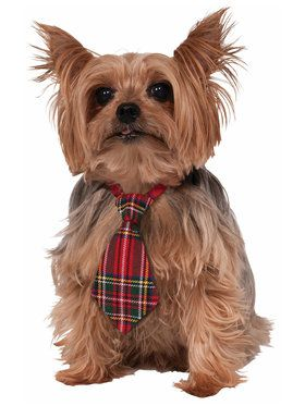 Christmas Plaid Dog Necktie