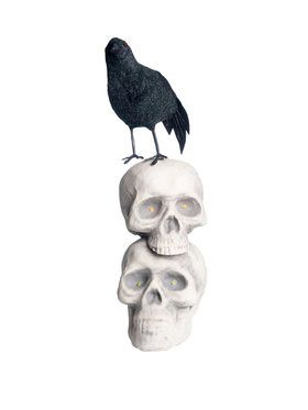 Crow On Skulls Prop