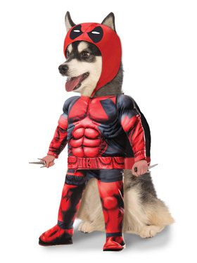 Deadpool Costume with Sais for pets