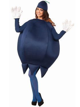 Deluxe Blueberry Adult Unisex Costume