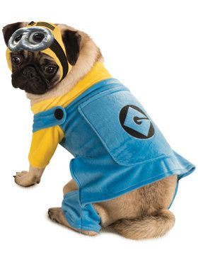 Despicable Me Minion Dog Costume