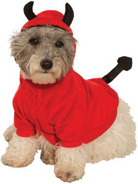 Devil Hoodie Costume for Pet