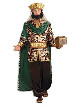 Emerald Wiseman Mens Costume