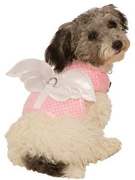 Angel Harness Costume for Pets