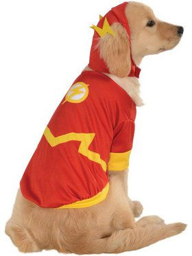 Flash Costume For Pets