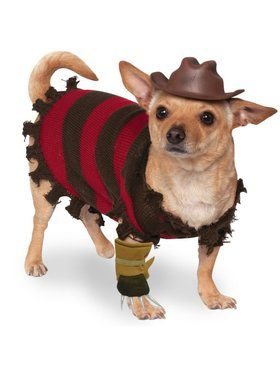 Freddy Krueger Costume for Pet
