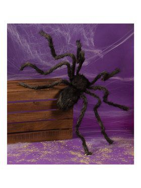 Giant Black Posable Hairy Spider
