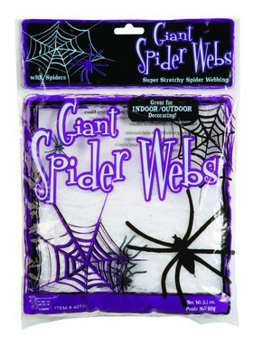 Outdoor Spider Webs