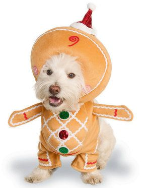 Gingerbread Man Classic Pet Costume