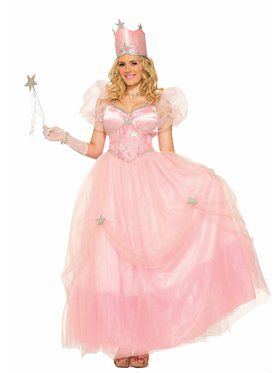 Good Fairy Witch Adult Costume