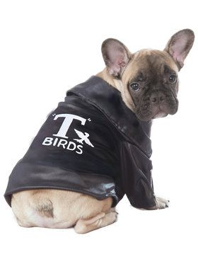 Grease T-Birds Jacket Dog Costume
