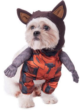 Guardians of the Galaxy Walking Rocket Raccoon Costume for Pets