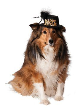 Happy New Year Hat Accessory for Pets