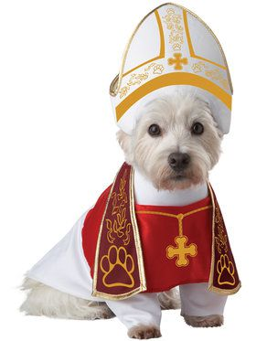 Holy Hound Costume for Pets