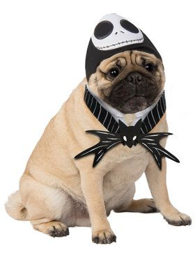 Jack Skellington Pet Costume Dog