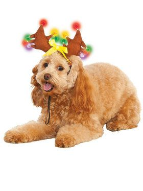Light-up Reindeer Antlers Accessory for Pets