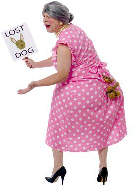 Lost Dog Adult Costume